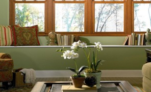 Residential Hung Windows
